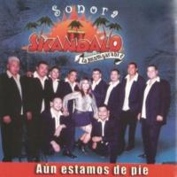 Sonora Skandalo La Goloza
