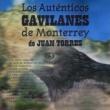Los Auténticos Gavilanes de Monterrey de Juan Torres Los Auténticos Gavilanes de Monterrey de Juan Torres
