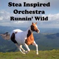 Stea Inspired Orchestra Runnin' Wild