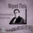 Miguel Fleta Miguel Fleta - Grandes Éxitos, Vol. 2