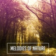 Nature Sounds for Sleep and Relaxation Melodies of Nature ‐ Soft Music, Relaxing Therapy, Stress Free, Deep Meditation, Rest, Nature Sounds, Tranquility