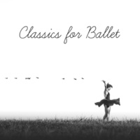 Ballet Dance Academy Act I, Sleeping Beauty, Op. 66 No. 6, Valse