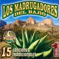 Los Madrugadores del Bajio Castillo Caido