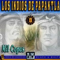 Los Indios De Papantla Rumbo al Norte