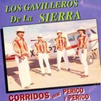 Los Gavilleros De La Sierra Lupe Soza