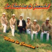Los Llaneritos de Guamuchil El Pajaro Prieto