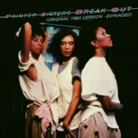 "The Pointer Sisters I'm So Excited (12"" Remix)"