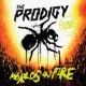 The Prodigy World's on Fire (Live)