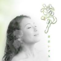 増田いずみ 夢