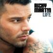 Ricky Martin Life