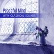 Awakening Morning Music Ambient Violin Sonata No. 17 in C Major, K. 296: I. Allegro vivace