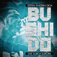 Bushido Alles wird gut (Live in Ludwigsburg)