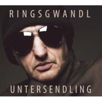 Georg Ringsgwandl Analog