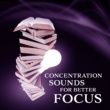 Brain Stimulation Music Collective Easy Focus