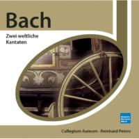 """Collegium Aureum Cantata No. 202: Weichet nur, betrübte Schatten, BWV 202, """"Wedding Cantata"""": Die Welt wird wieder neu (Recitativo)"""
