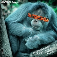 International Baby Monkey Flute (Ninetoes Remix)
