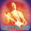 The Jimi Hendrix Experience Sunshine Of Your Love (Live 10/12/68 Winterland, San Francisco, CA)