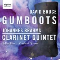 Julian Bliss/Carducci String Quartet Gumboots: Part One
