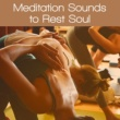 Yoga Relaxation Music