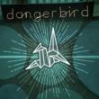 Jesse Harris Dangerbird Records 2015 Google Play Sampler