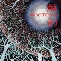Anatomy 解剖