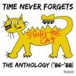 Scruffy The Cat 40 Days & 40 Nights