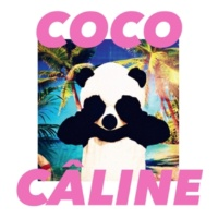 Julien Doré Coco Câline (Alle Farben Remix)