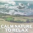 Rest & Relax Nature Sounds Artists Sunset