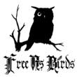 Free As Birds Complex in the Universe
