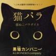 黒猫カンパニー サンマサンバ (Samba)