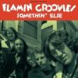 The Flamin' Groovies Somethin' Else