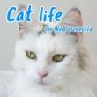 GT-K Cat life (吹奏楽版)