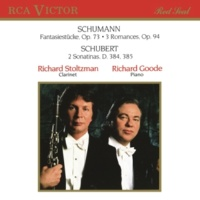 Richard Stoltzman/Richard Goode Sonatina in D Major, D.384, Op.137/ 1: II. Andante