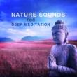 Kundalini: Yoga, Meditation, Relaxation Nature Sounds