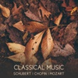 Classical Sounds Solution Four Polonaises, Op. 75, D. 599: II. Polonaise in B-Flat Major