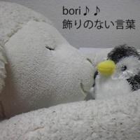 bori♪♪ 飾りのない言葉