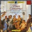"""Jiri Stivin Flute Concerto in F Major, RV 433 """"La Tempesta di Mare"""": I. Allegro"""