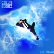 Collie Buddz Go Hard