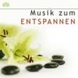 Tiefenentspannung Atmospheres & gehirntraining & Mental Detox Series Musik zum Entspannen, Konzentrieren und Lernen, Entspannungsmusik