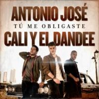 Antonio José/Cali Y El Dandee Tú Me Obligaste