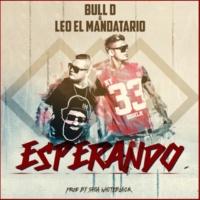 Bull D & Leo El Mandatario Vamos a Hablar (Bonus Track)
