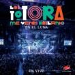 Los Totora Intro (En vivo)