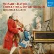 Ensemble Castor Mozart & Haydn: Concertos & Divertimentos
