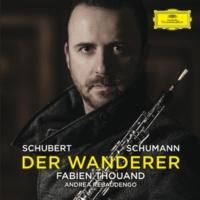 Fabien Thouand/Andrea Rebaudengo Der Wanderer