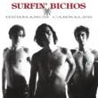 Surfin' Bichos Hermanos Carnales (Remasterizado)