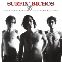 Surfin' Bichos San Jose Experience (Version Demo) (Remasterizado)