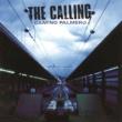 The Calling Camino Palmero