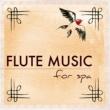 Flute Relaxation History Maker