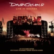 David Gilmour Comfortably Numb (Live In Gdansk - Audio)