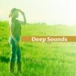 Healing Power Natural Sounds Oasis Sounds of Nature